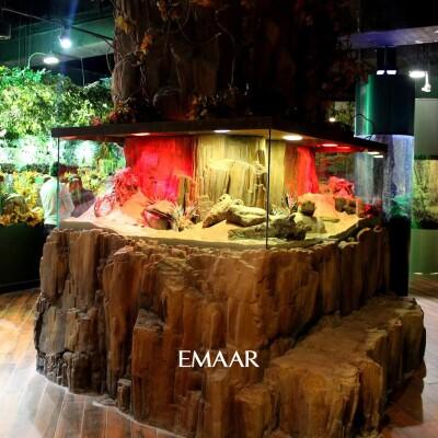 Emaar Akvaryum & Sualtı Hayvanat Bahçesi İstanbul Giriş Bileti
