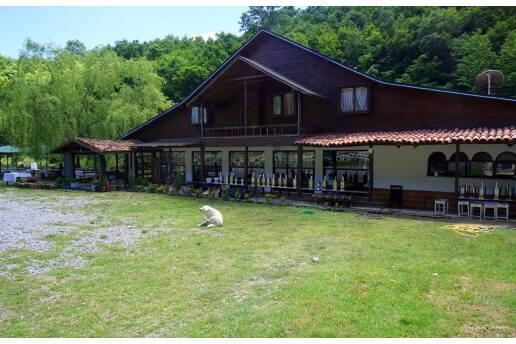 Şile Yeşil Göl Restaurant'ta Serpme Köy Kahvaltısı ve Yemek Menüleri + Deniz Bisikleti Kullanımı