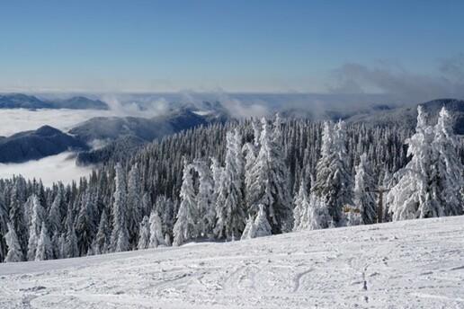 Sömestr Tatiline Özel Erken Rezervasyon Fiyatları İle 5 Gece 6 Gün Kahvaltı veya Yarım Pansiyon Konaklama Dahil Bulgaristan Pamporovo Kayak Turu