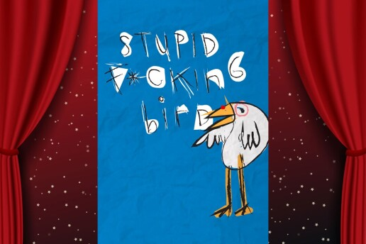 Çehov'un Martı'sından Uyarlama 'Stupid Fucking Bird' Tiyatro Bileti