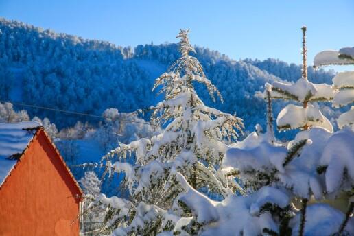 EK BEDELSİZ 5 Yıldızlı Ramada Hotel'de 1 Gece Yarım Pansiyon Konaklamalı Kartepe Kayak Turu