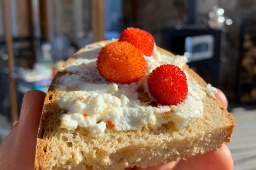 Urla Adahan Butik Otel'de Leziz Serpme Kahvaltı Menüsü