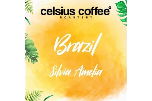 Brezilya Silvia Amelia 250 Gr Nitelikli Kahve