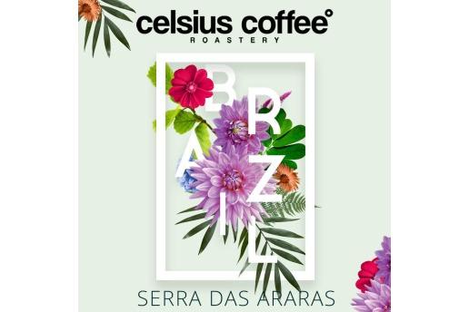 Brezilya Serra Das Araras 250 Gr Nitelikli Kahve