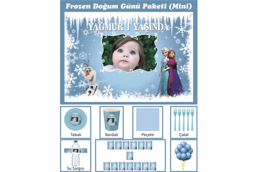 Kişiye Özel Frozen Konsepti Doğum Günü Parti Seti (Mini)