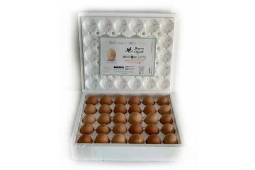 Doyuran Organik Yumurta 60'lı Orta(M) Boy (53-62 gr) Organik Yumurta