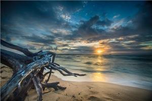 Denizde Gün Batımı Forex Tablo