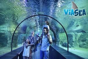 Viasea Akvaryum Çocuk ve Yetişkinler İçin Giriş Bileti