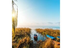 Her Cumartesi, Pazar Hareketli Hereke'de Serpme Kahvaltı Dahil Maşukiye, Ormanya, Sapanca Ters Ev Doğa, Terapi ve Göl Turu