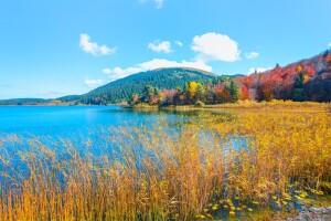Doğayla Baş Başa Bir Gün: Abant, Gölcük Cennet Gölü Turu