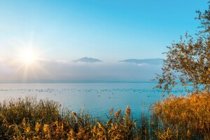Bayram Dönemi ve Her Cumartesi & Pazar Hareketli Hereke'de Kahvaltı Dahil Günübirlik Maşukiye & Ormanya & Sapanca Ters Ev Doğa Terapi ve Göl Turu