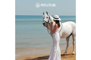 Sarıyer Atlı Tur'dan Düğün, Nişan ve Sünnet Gibi Özel Günleriniz İçin At Kiralama Hizmeti