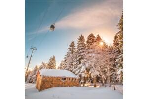 Her Cumartesi Hareketli 1 Gece 2 Gün İbis Otel Konaklamalı Uludağ Kayak Turu