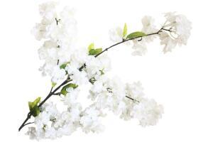 Yapay Çiçek Bahar Dalı Japon Kiraz Çiçeği 90 Cm Beyaz