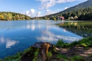 Her Hafta Sonu Günübirlik Kahvaltı ve Öğle Yemeği Dahil Üç Güzeller Abant, Cennetgöl, Efteni Gölü Turu