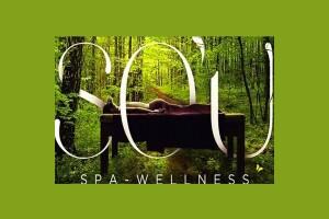 So'u Spa & Wellness'te 30 Dakika Kese Köpük veya 50 Dakika Masaj Seçenekleri