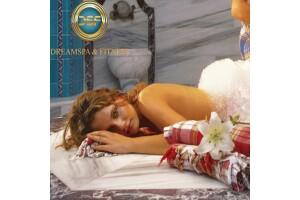 Dreamspa & Fitness Bh Conference & Airport Hotel'de SPA ve Hamam Kullanımı Dahil Masaj Keyfi