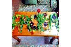 Façiba & Deha Pansiyon & Restaurant'ta Şile Nehrinin Muhteşem Manzarası İle Açık Büfe Kahvaltı