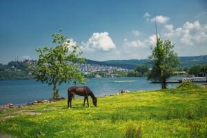Her Cumartesi & Pazar Günübirlik Kahvaltı Dahil Maşukiye, Ormanya, Sapanca Doğa Turu