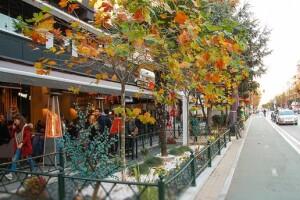 Hafta Sonu Günübirlik Dedeağaç, Jumbo & Lidl Market Alışveriş ve Makri Köyü Turu