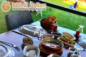 Bülbül Dalları Kır Bahçesi'nde Enfes Serpme Kahvaltı Menüsü