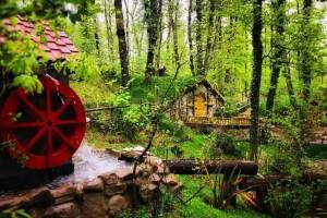 Her Pazar Köy Kahvaltısı Dahil Günübirlik Yuvacık, Maşukiye, Ormanya Turu