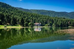 Kesin Kalkışlı 1 Gece 2 Gün 5 Yıldızlı Ramada Hotel Konaklamalı Abant Ormanya Doğa Turu
