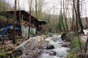 Günübirlik Sisli Vadi, Maşukiye, Ormanya Turu