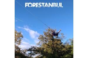 Forestanbul Macera Parkı'nda Parkur + Dev Salıncak + Serbest Düşüş
