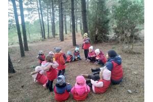 34 Orman Park'ta Çocuklara Özel Doğayla İç İçe Aktiviteler