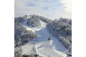 Kahvaltı Dahil Her Gün Kesin Hareketli Günübirlik Ormanya, Maşukiye, Cam Teras ve Kartepe Kayak Turu
