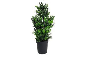 Yapay Çiçek Siyah Saksıda Yeşil Şimşir Ağacı 65 Cm