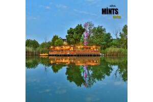 Mints Hotel Ağva'da Doğayla Başbaşa Konaklama Seçenekleri